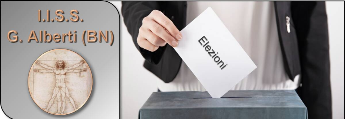 carosello elezioni