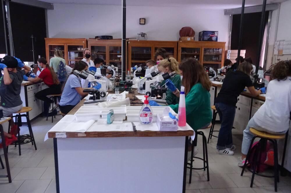 Laboratorio Scienze 4