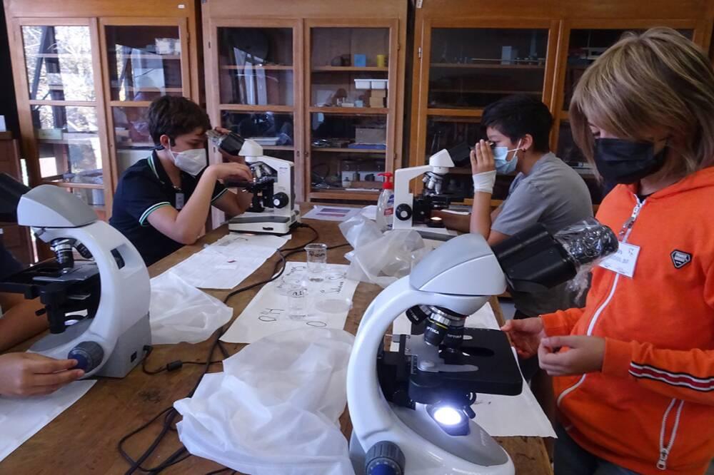 Laboratorio Scienze 5