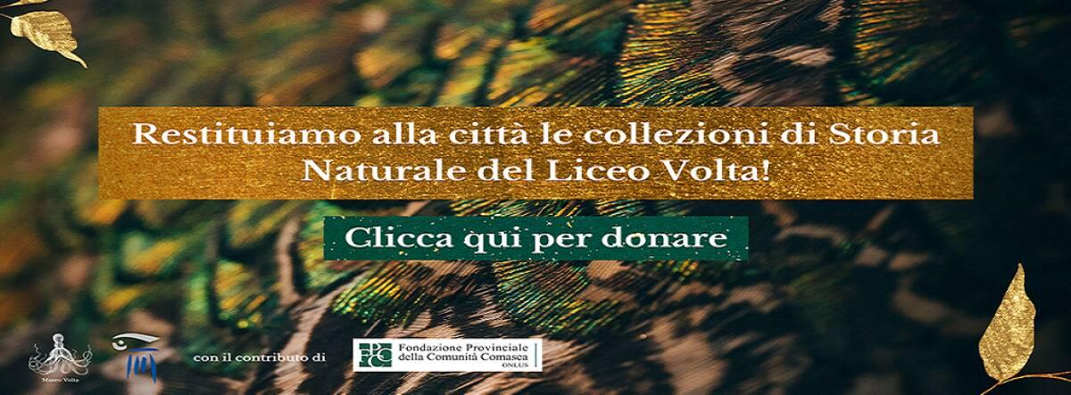 Collezioni Scienze Naturali - Liceo Volta