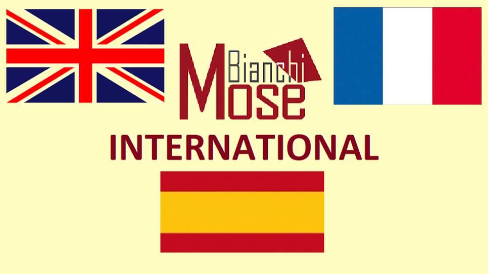 Mosè Bianchi international