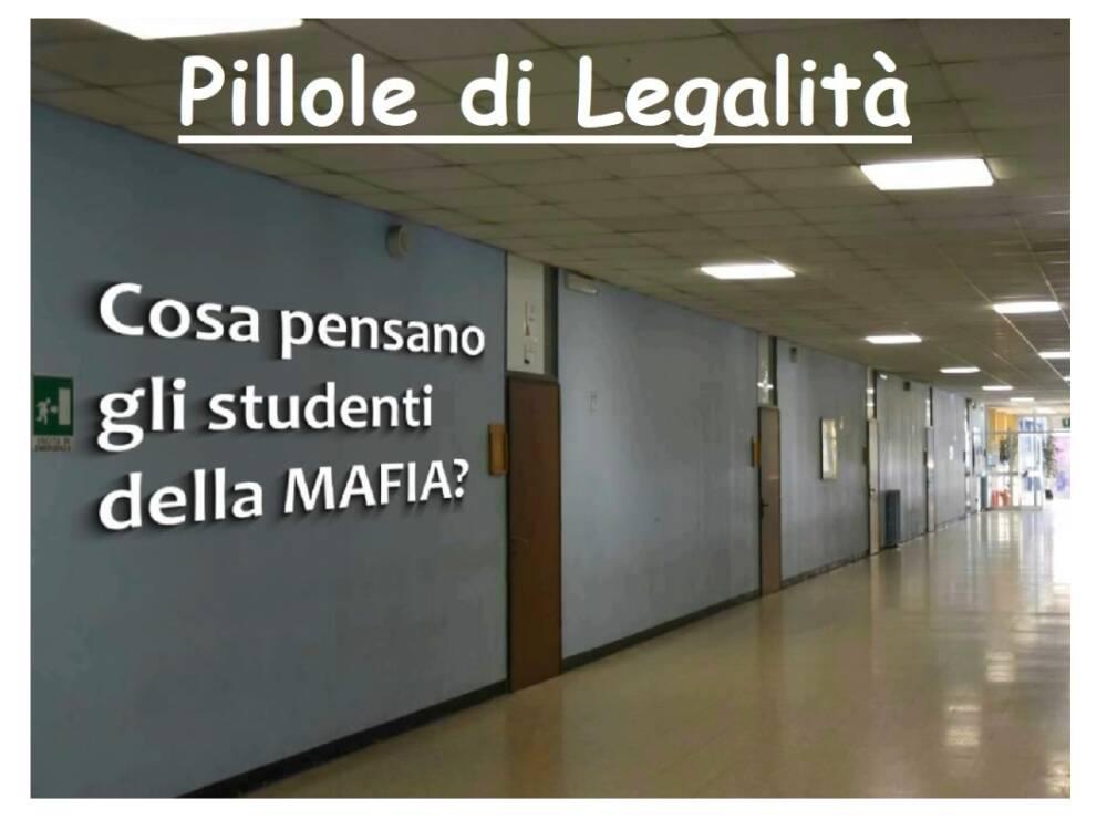 pillole_legalit