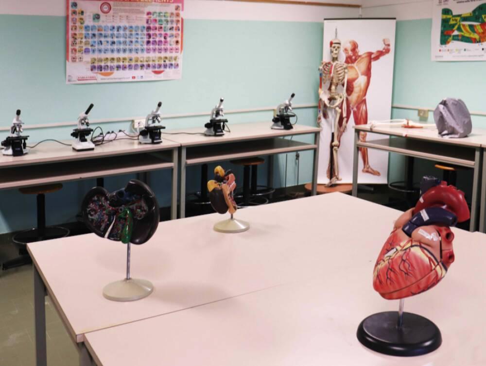 lab-scienze-microscopia-def