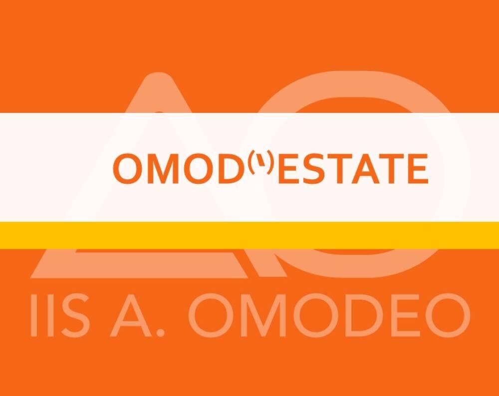 OMOD(')ESTATE
