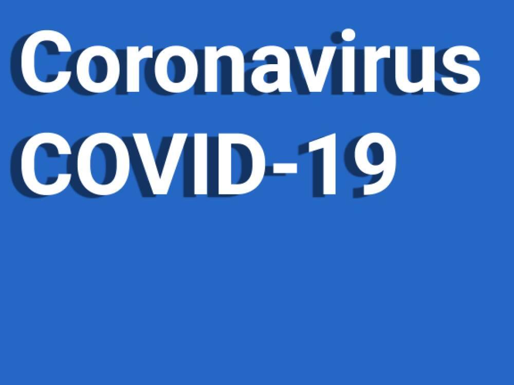 Immagine di COVID-19: Aggiornamenti