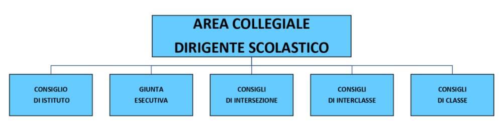 organigramma 3