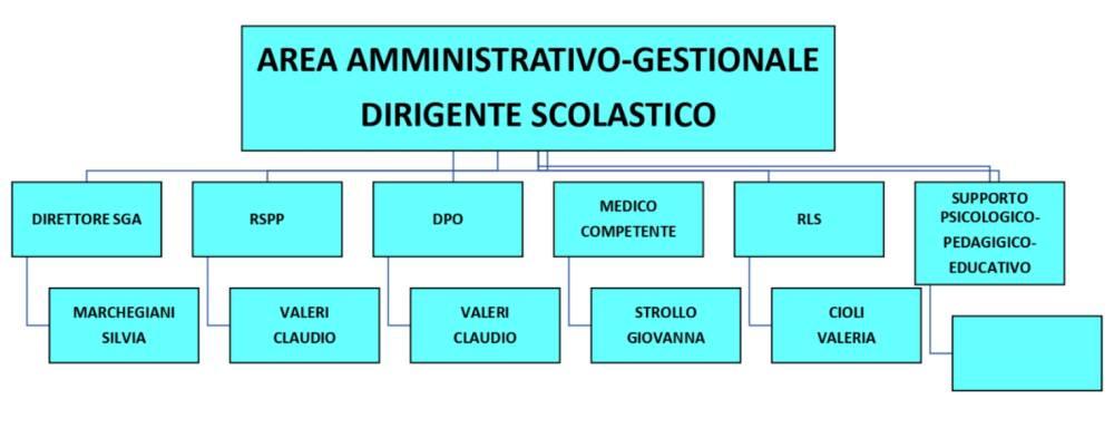 organigramma 4