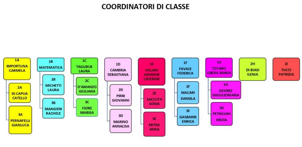 organigramma 5