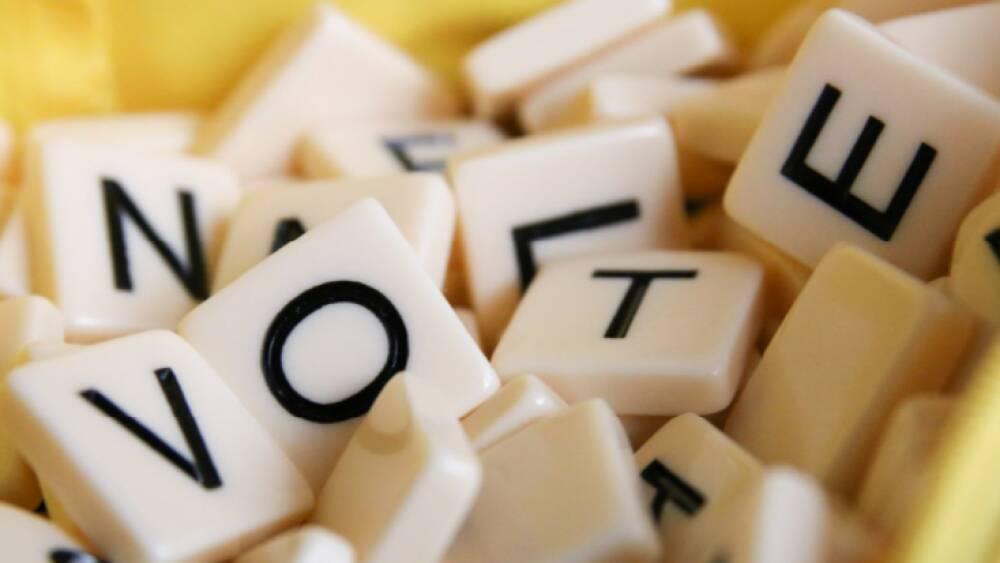 immagine per votazioni