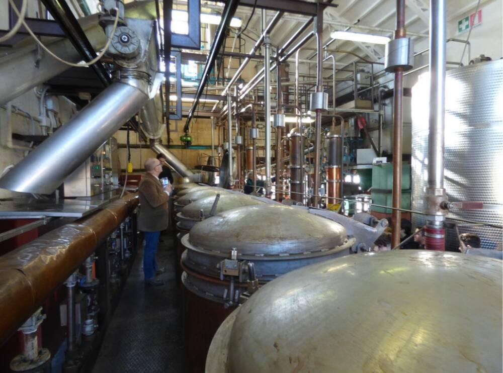 distilleria_dominis2
