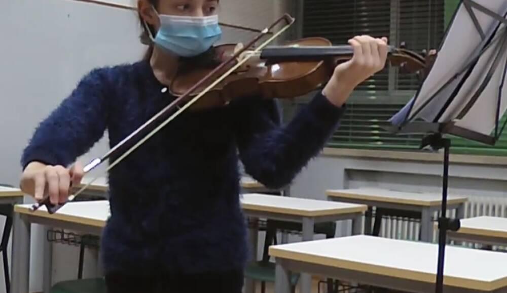 Violino dettaglio