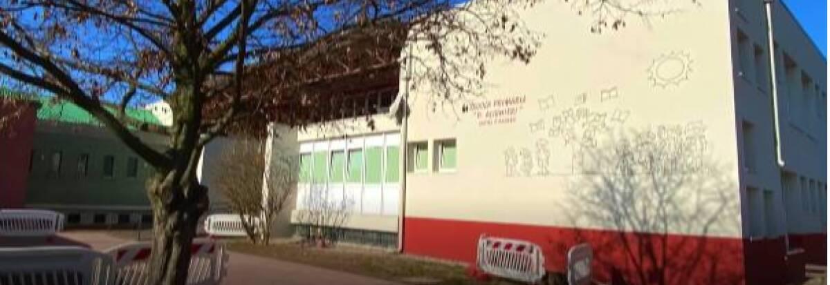 """Scuola primaria """"D. Alighieri"""""""