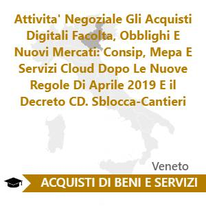 Attivita' Negoziale Gli Acquisti Digitali Facolta, Obblighi E Nuovi Mercati: