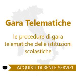 Le Procedure Di Gara Telematiche